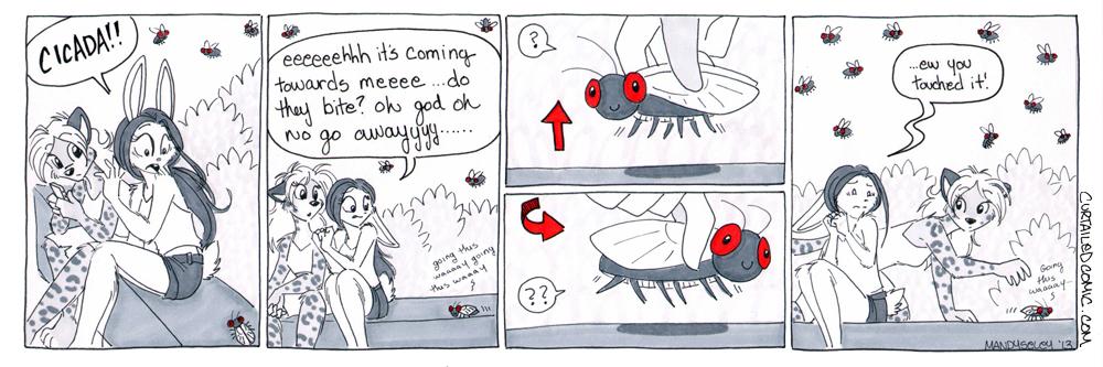 Eek Cicada!